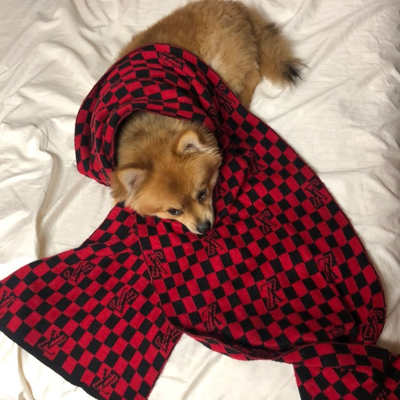 Louis Vuitton Accessories - LV Checkered scarf